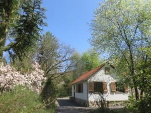 Forstbotanischer Garten  (c) Sibylle Susat)