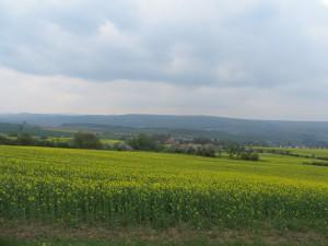 Wandern auf Panoramawegen (c) Sibylle Susat