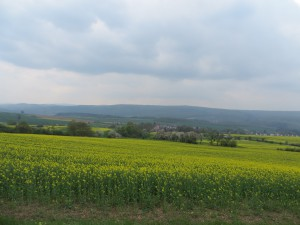 Panorama (c) Sibylle Susat