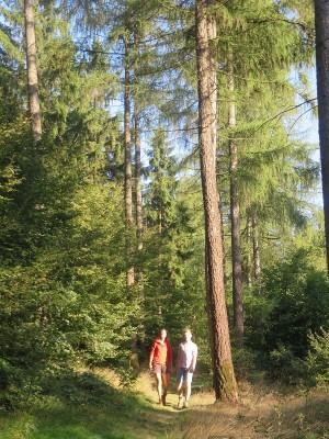 Wandererin Naturpark Münden (c) Sibylle Susat