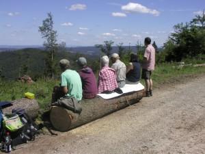 Ausblicke im Kaufunger Wald (c) G. Knauf-Golde