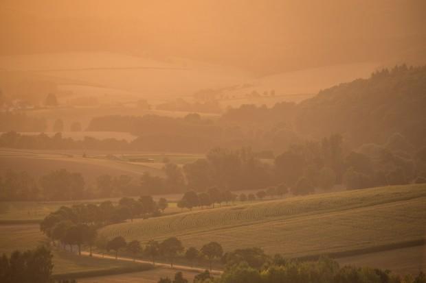 24 Waldbaden Morgenstimmung im Naturpark Münden 620x413 Waldbaden – das ganzheitliche Lebenselixier