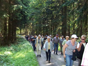 Wandergruppe im Bramwald (c) Georg Hoffmann