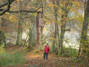 Herbstwanderung im Naturpark (c) Sibylle Susat