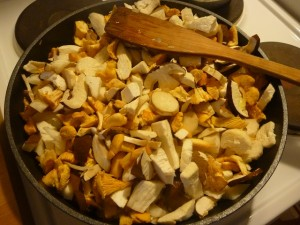 Eine leckere Pilzpfanne (c) Sibylle Susat