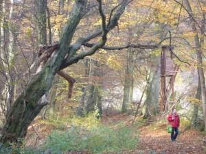 Wandern auf historischen Wegen (c) Sibylle Susat