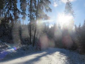 Winterwanderung (c) Sibylle Susat
