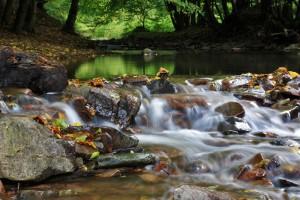 Herbstwasser, Bach im Naturpark Münden (c) Ralf König