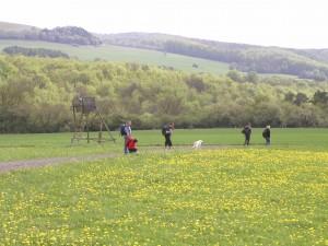Panoramawege (c) G. Knauf-Golde