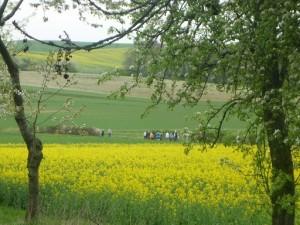 Wandern im Frhling (c) Sibylle Susat