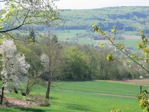 Frühling im Wesertal (c) Sibylle Susat