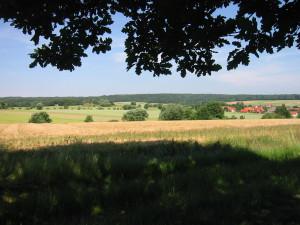 Landwirtschaft im Naturpark