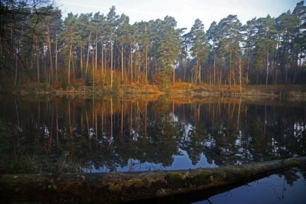 20140330 Brillensee 620x413 Waldmonitoring im Naturpark