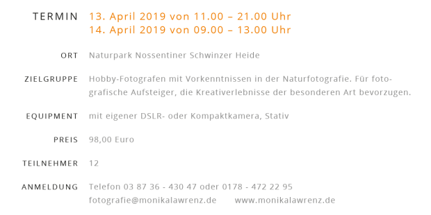 Ankündigung Fotoworkshop1 620x310 Foto Workshop Frühlingslicht im Naturpark am 13./14. April 2019