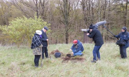 Baumpflanzung 2017 Tag des Baumesb Tag des Baumes