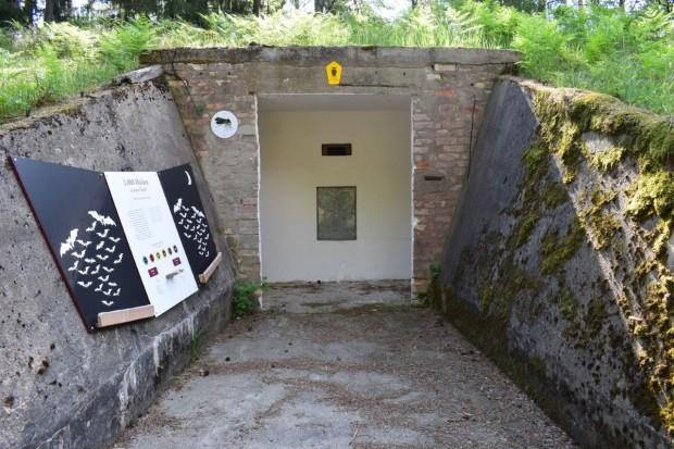 Bunkereingang kl 620x413 Sicherung und Optimierung von Fledermaus Winterquartieren in Bossow
