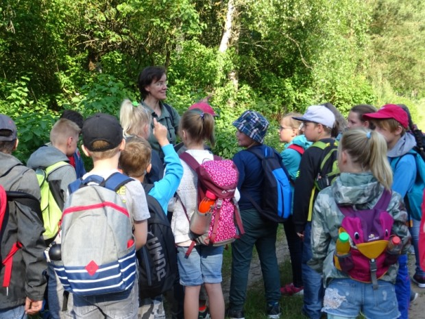 DSC00122 620x465 Wanderungen mit Grundschulklassen anlässlich des Umwelttages