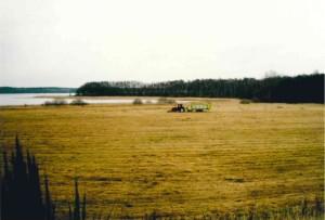 Drewitzer See 1994