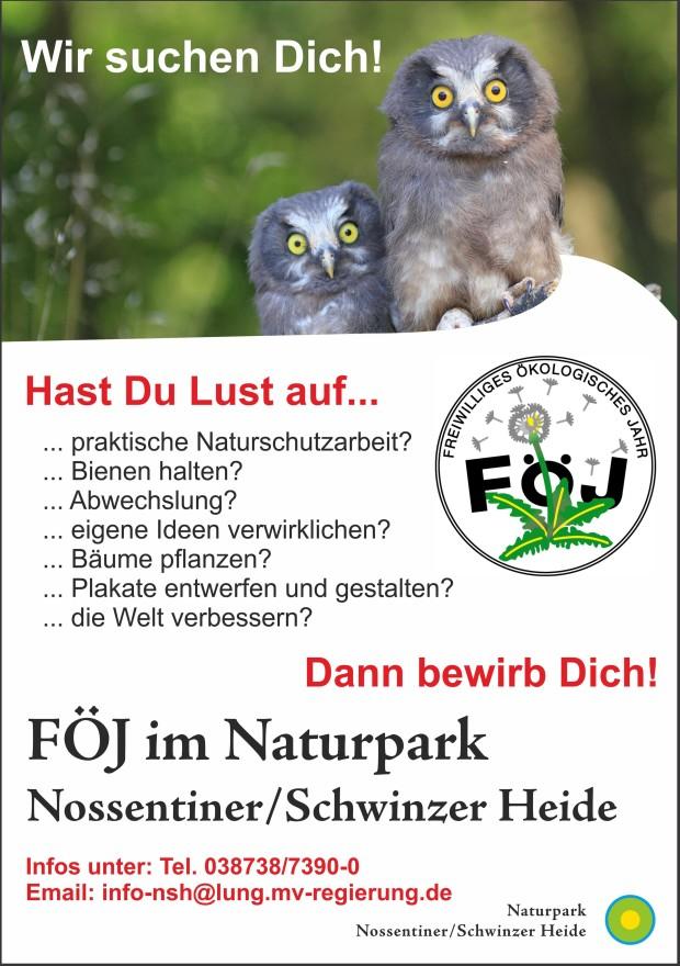 FÖJ Plakat 2019 web3 620x880 Freiwilliges Ökologisches Jahr im Naturpark   Stelle frei