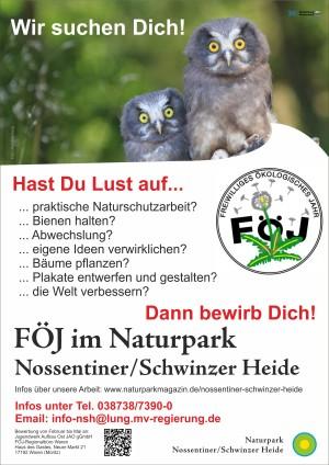FÖJ-Plakat_2020