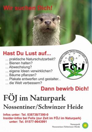 FÖJ-Plakat_2017