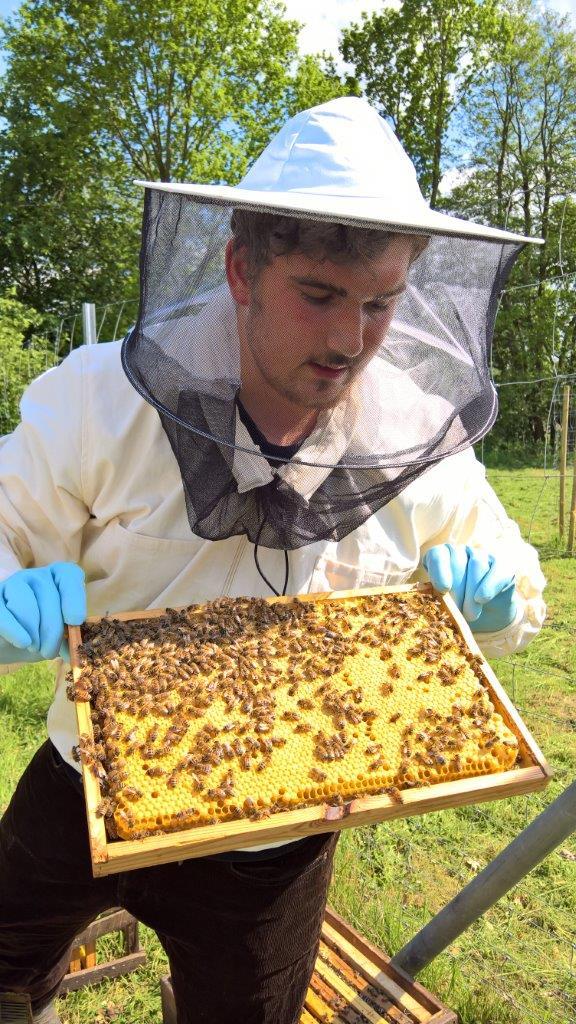 Felix Imker Naturpark Bienen im Anflug!