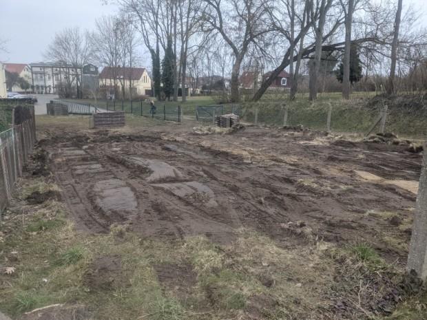 "IMG 20210324 WA0001 620x465 Schritt für Schritt zum ""Insektengarten"""