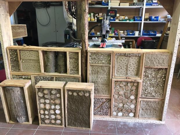 """IMG 20210527 WA0003 620x465 FÖJ Projekt """"Nisthilfen für Wildbienen"""""""