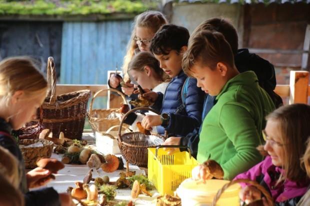 IMG 7508 620x413 Pilze im Naturpark suchen lernen