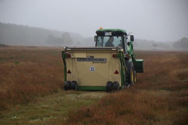 IMG 7613 620x413 Nachhilfe für die Heide