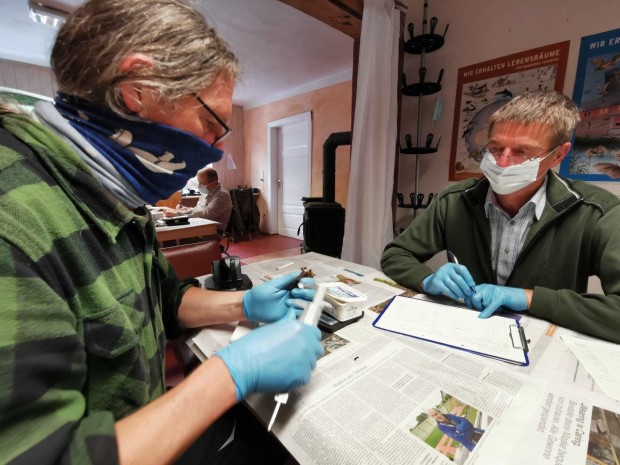 Martin Biedermann und Andreas Breuer bei Beringung 620x465 Fledermausforschung trotz Corona fortgeführt