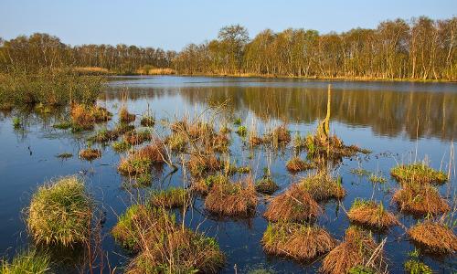 NSG NU22 2 beitrags 25 Jahre Naturpark   15 Jahre Karower Meiler