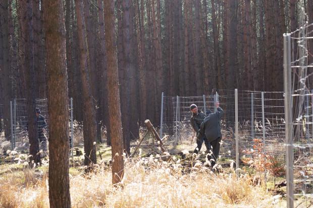 OM News NSH 05 620x413 Kooperation zwischen optimal media und dem Naturpark Nossentiner/Schwinzer Heide