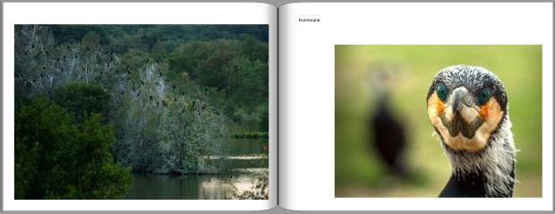 PDF Buch Entwurf Ansichtsexemplar 30 Jahre Naturpark page23 image18 620x239 Ein Buch entsteht   jetzt spenden!