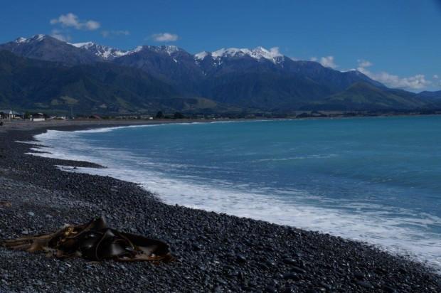 Pazifik und die schneebedeckten Berge der Seaward Kaikoura Range Foto Thomas Fitzke mini 620x412 Neuseeland per Rad   Vortrag von Thomas Fitzke am 13.3.2019
