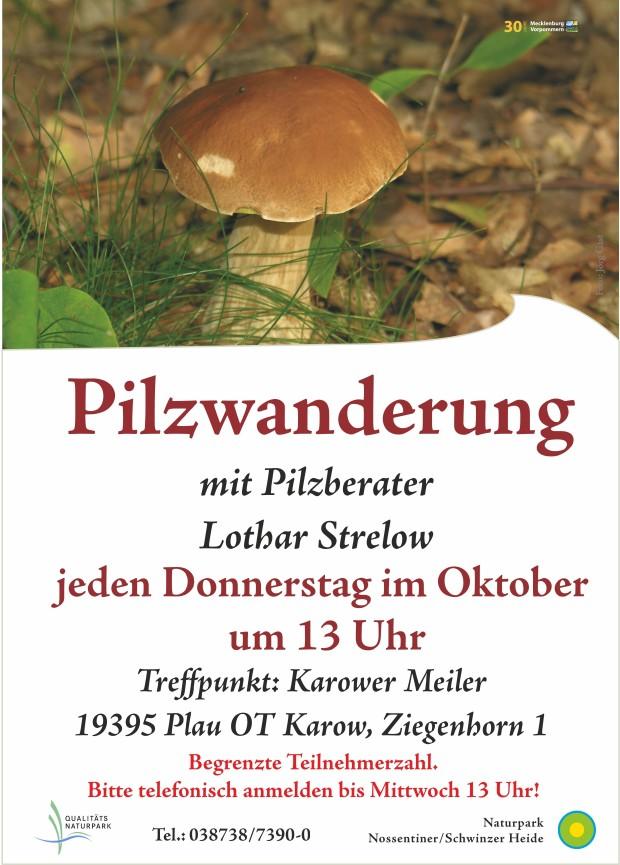 Plakat Pilzexkursion2 620x865 Jeden Donnerstag im Oktober Pilzwanderung!