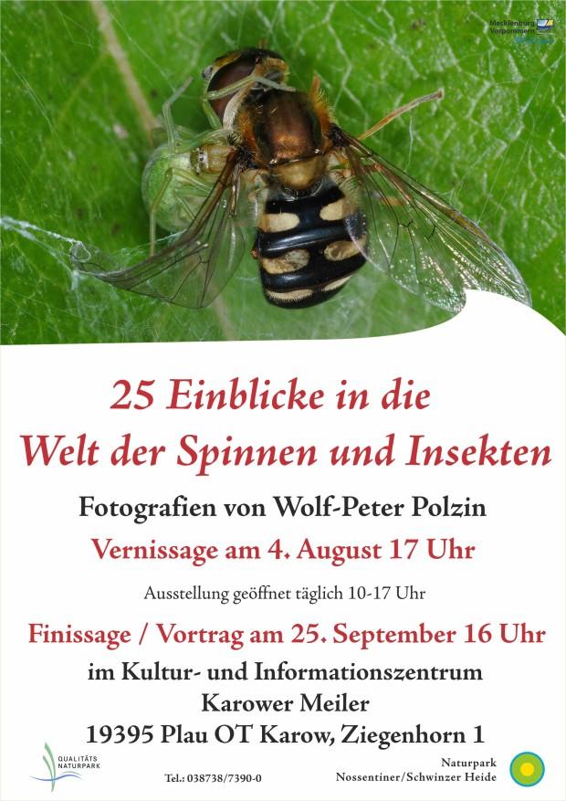 Plakat Polzin 620x877 Neue Ausstellung: 25 Einblicke in die Welt der Spinnen und Insekten