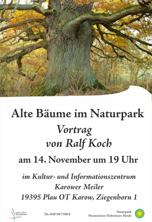 Plakat_Vortrag Alte Bäume