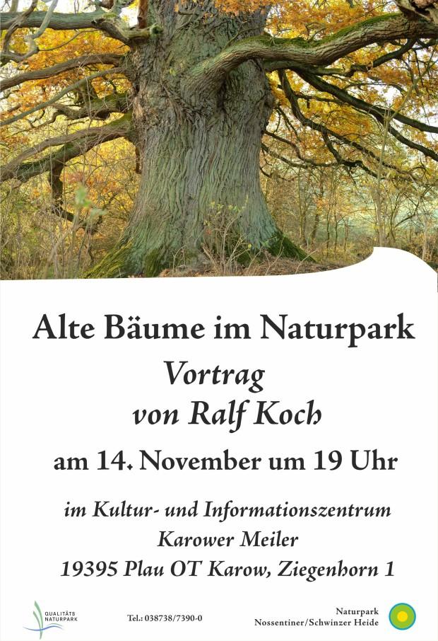 Plakat Vortrag Alte Bäume 620x906 Vortrag Alte Bäume im Naturpark von Ralf Koch