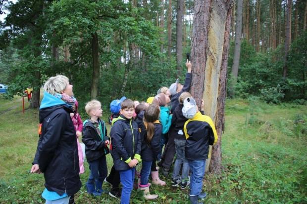 Thema FM Naturparkschule 620x413 Regionale Schule Krakow am See ist jetzt Naturpark Schule