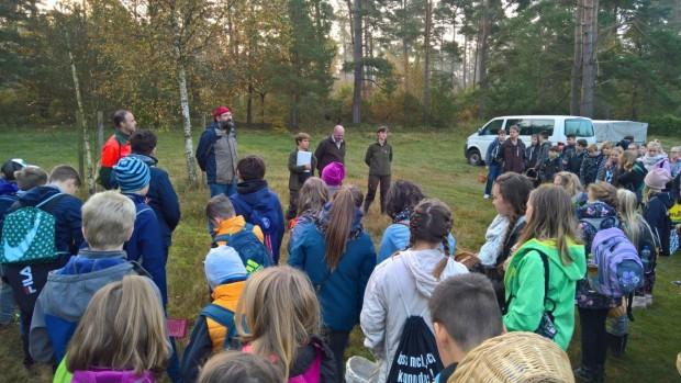 WP 20171019 09 05 45 Pro 620x349 Pilze im Naturpark suchen lernen