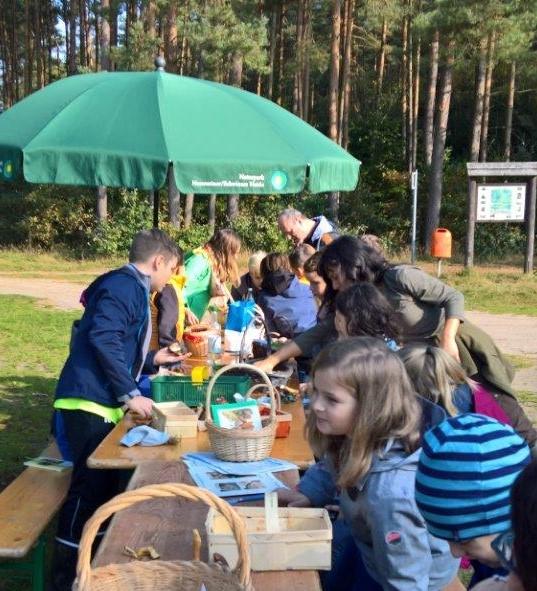 WP 20171019 11 33 20 Pro Pilze im Naturpark suchen lernen