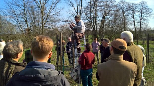 WP 20190330 14 53 07 Rich 620x349 Achtung abgesagt: Seminar Obstbaumveredelung am 28.03.2020