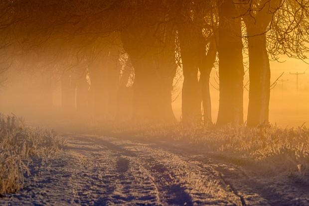 Wintermorgen Foto Klaus Herbert Schröter 620x414 Vortrag Mit dem Ranger auf Pirsch im Nationalpark Vorpommersche Boddenlandschaft