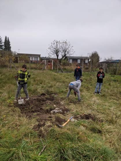 image0064 Projekt Insektengarten beginnt