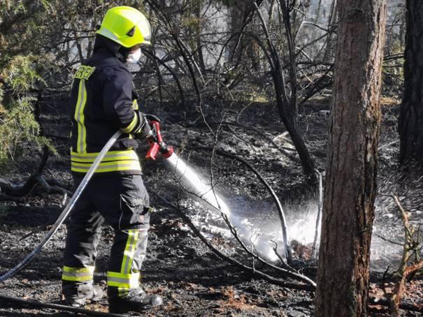image0081 Waldbrand in der Schwinzer Heide