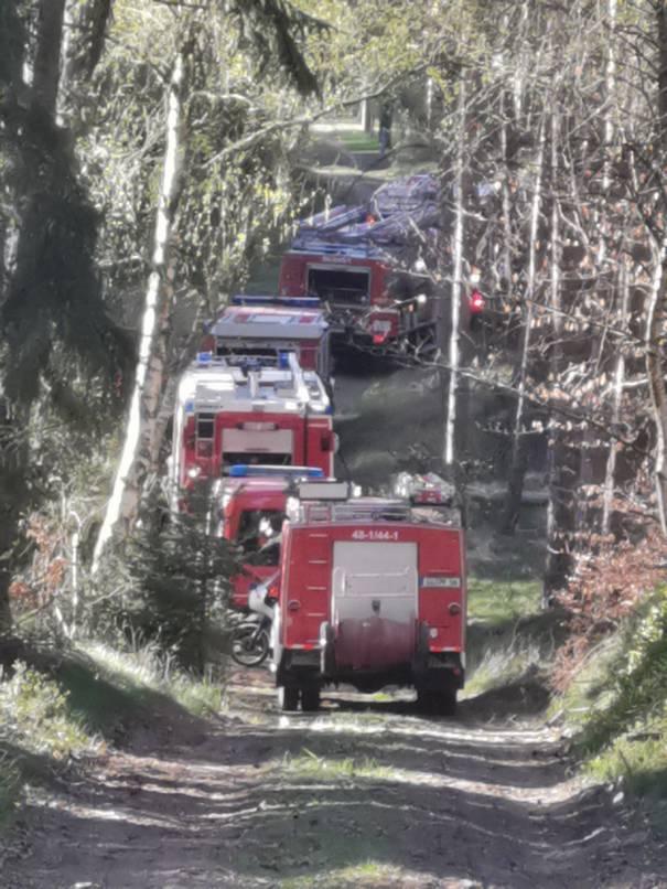 image010 Waldbrand in der Schwinzer Heide