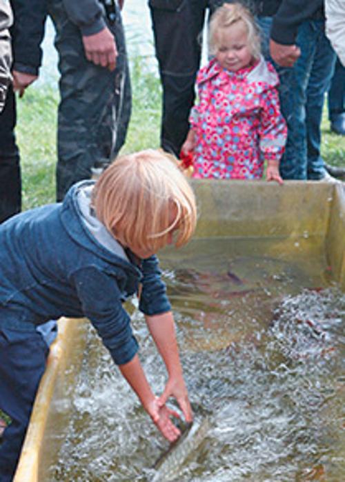 streichelzoo beitrag 20. Fischerfest im Naturpark