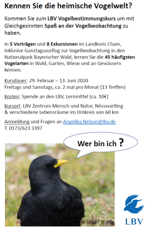 LBV Vogelstimmenkurs