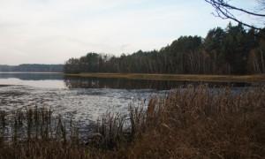 Neubäuer See © Naturpark Oberer Bayerischer Wald